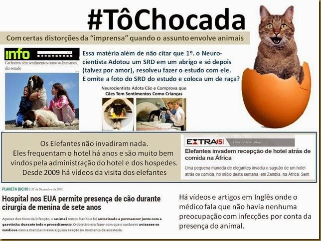 to-chocada