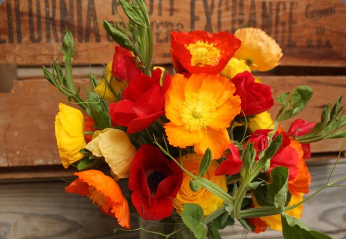 1342752834504-S4JE79FANHJ1OB6Y8SF9-1000w pollen floral art