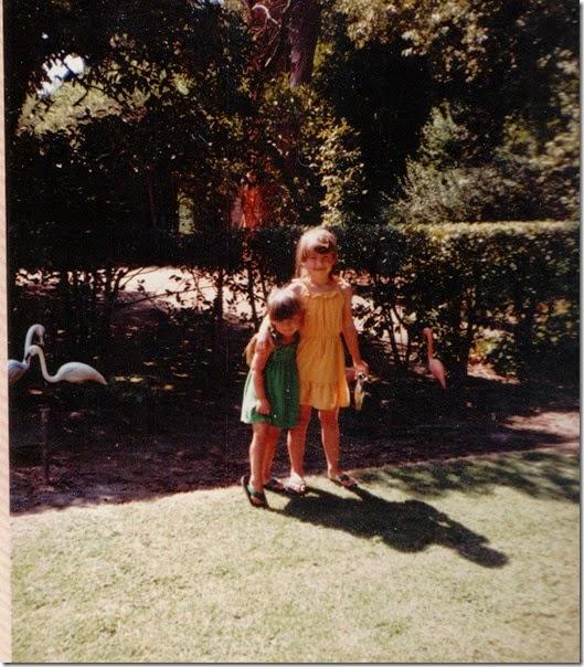 Back yard 1982