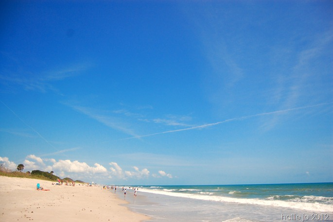 Beach49