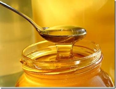Tratamientos para el Cabello con Miel de Abeja