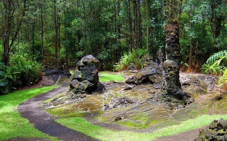 lava-trees-2