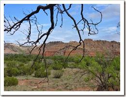 Palo Duro Canyon S.P TX