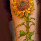 sunflower - tattoo meanings