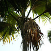 seychelles7_20070412_1685350184.jpg