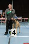 20130511-BMCN-Bullmastiff-Championship-Clubmatch-1918.jpg