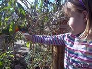 Nov zoo day  (2)