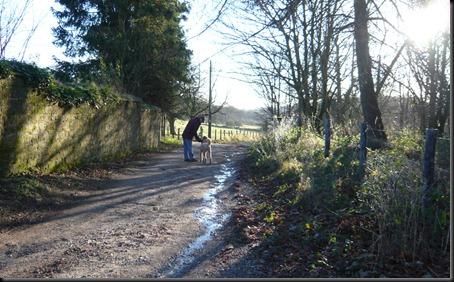 frosty walk7