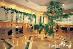 Фото 9 Iberostar Bellis Hotel ex. Asteria Bellis Resort