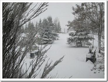 20120224_snow-storm_002