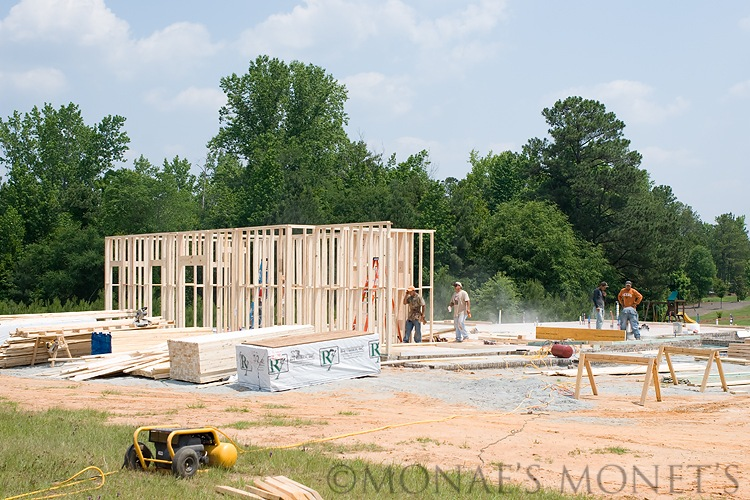 1st floor start framing blog