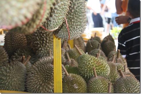 Durian Penang 026