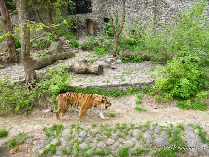 Kiev_Zoo_30.jpg