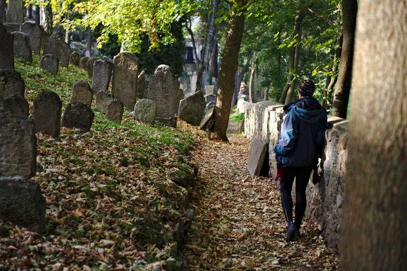 Contemplating the long history of the jewish cemetery from Trebic, Czech Republic.