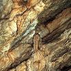 bielianska_jaskina14.JPG