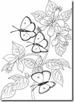 primavera marioosas blogcolorear (3)