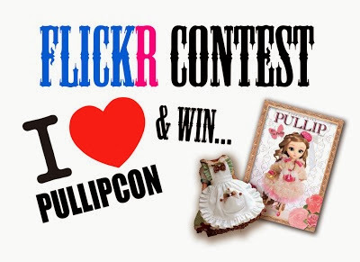 flickr contest pullipcon
