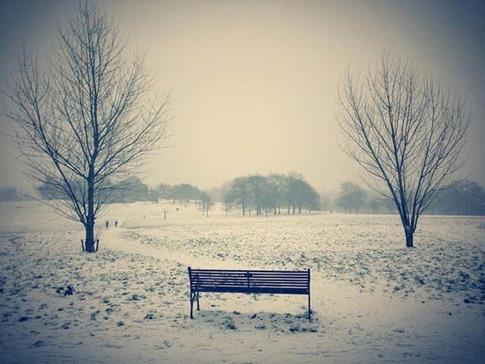 43. Luz de invierno