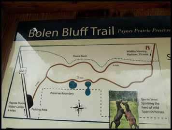 Bolen Bluff Trail-Spring Equinox 040