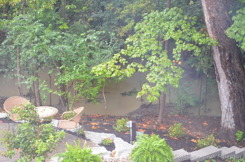 flooding backyard1