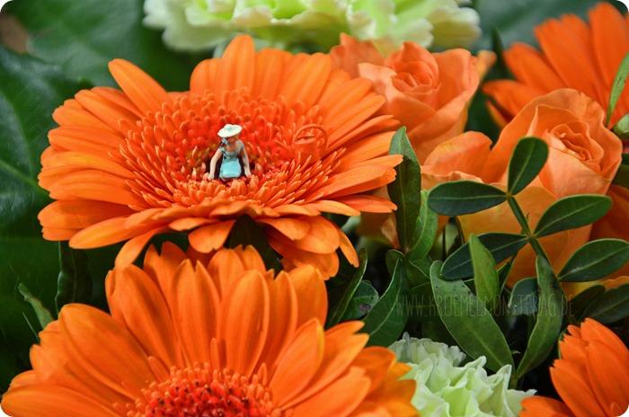 KleinerDienstag 03_1 Blumen abstauben