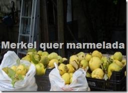 oclarinet.blogspot.com  Merkel quer marmelada.Nov.2012