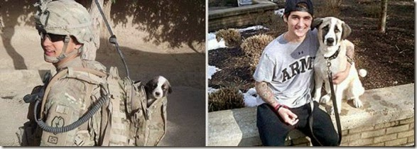 pet-owners-then-now-006