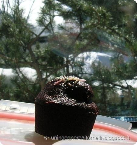 muffin cacao senza uova latte burro acqua