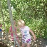 Den udfordrende junglesti, hvor moren næsten forstuvede en ankel...