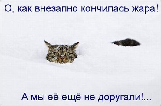 kotomatrix_12