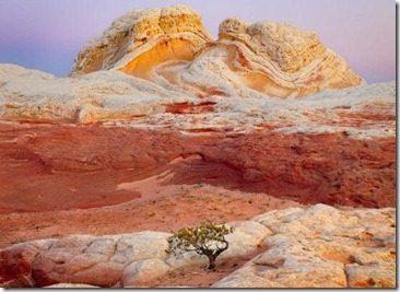 immagine-canyon