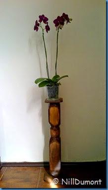Pedestal-reciclado-02-7
