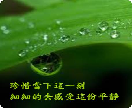搜狗截图_2013-02-15_15-05-00