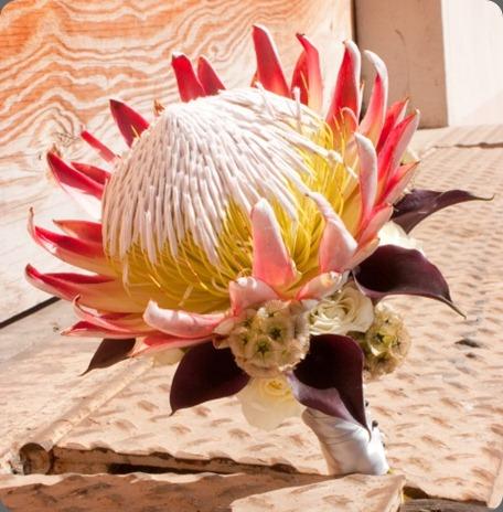 bouquet-6 jacqueline ahne