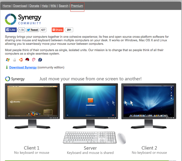 Synergy project opening Website screen