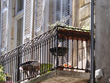 Gratar in balcon