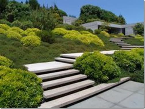 Oxford College Of Garden Design Steps A Design Opportunity - designing garden steps