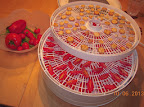 around 60 juliet tomatoes - again - and 3 sliced eggplant in the dehydrator 10/06 2013
