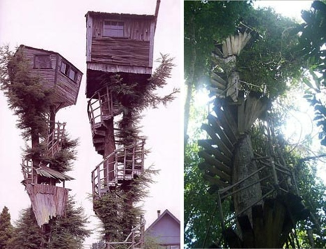 tree-house-historical1