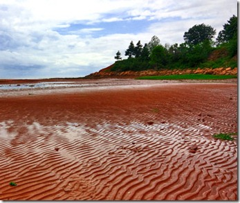 201202-w-unusual-beaches-red-sands-shore