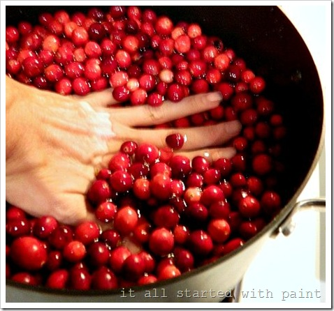 Cranberry Jelly Hand Test (550x413) (2)