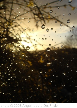 'Rain drops on my window' photo (c) 2008, Angeli Laura De - license: http://creativecommons.org/licenses/by/2.0/
