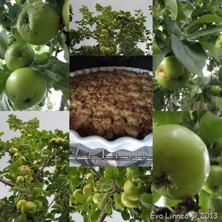 äppel13