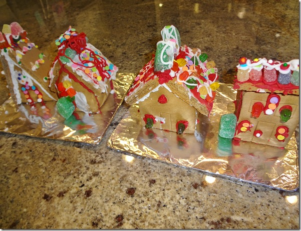Gingerbread Houses 006