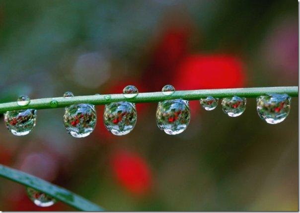 gota de agua (4)