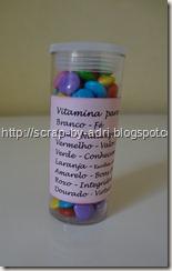 Vitamina Moças (11)