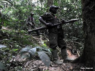 Des rebelles des FDLR dans la forêt de Pinga dans l'Est de la RDC, le 06/02/2009. Radio Okapi.net