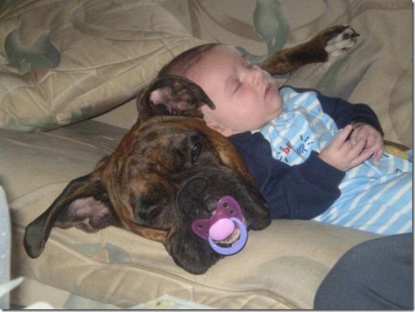 Crianças e animais (5)