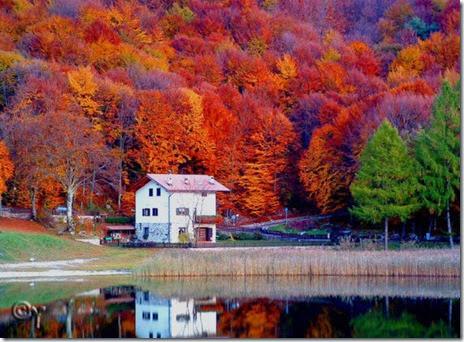 autumn-colors-fall-001