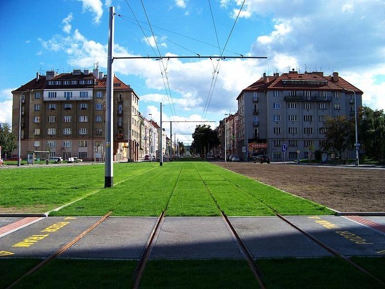 grass-tram-tracks-6